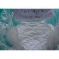 Testosterone Propional Powder